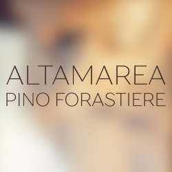 pinos altos singles dating site 0 single family homes for sale in pinos altos nm view pictures of homes, review sales history, and use our detailed filters to find the perfect place.